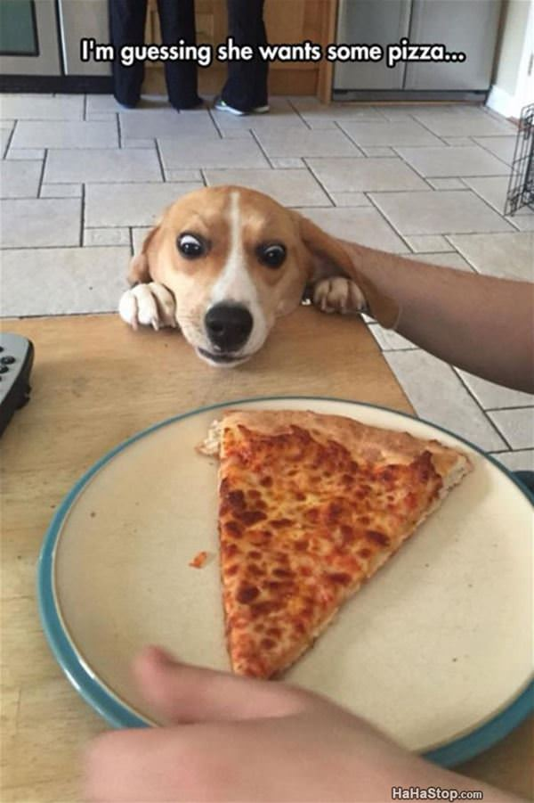 I Want Some Of The Pizza
